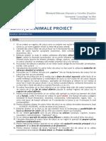 Cerinte Proiect - Bazele Informaticii (1)