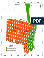 PLANO - CAMPOS SEGUN FASES DE EJECUCIÓN.pdf