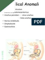 Umbilical Anomali