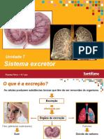 unidade7-sistema-excretor-110915114311-phpapp02.pdf