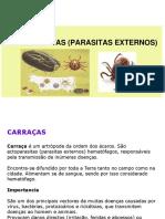 AULA 15 Ectoparsitas carraças.ppt
