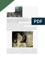 Vinča-daleka istorija Evrope.pdf