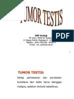 Tumor Testis Editan
