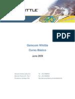 Manual Basico Whittle