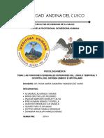 Monografia Psicologia Medica