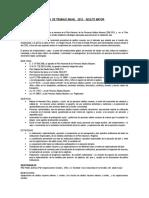 Plan de Trabajo 2012 Adulto Mayor