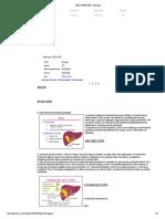 BILIS FUNCIÓN - Pancreas
