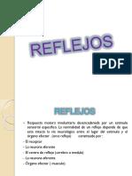 Reflejossss Expo
