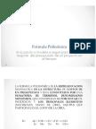 Presentación Formula Polinomica