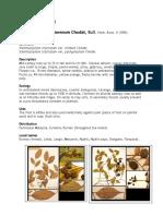 Xanthophyllum amoenum.docx