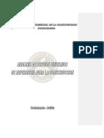 P. U. Bolivia.pdf