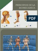 Principios de La Biomecanica
