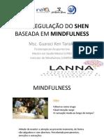 Auto Regulação Do Shen Baseada Em Mindfulness