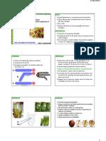 composição quimica [Aula Nº 02].pdf