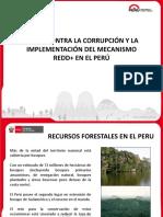 09 Peru - Presentacion AC REDD
