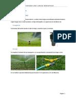 316910946-Tipos-de-Irrigacion.docx