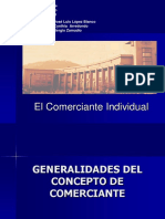 Comerciante_Individual.pdf