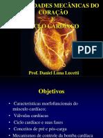 Ciclo Cardíaco Atv. Condutora Do Coração - Fmj