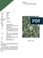 4-040_5.pdf