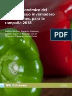 Inta St62 Analisis Economico Pimiento Corrientes