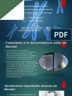 Integradora 2   trastornos geneticos  Genetica