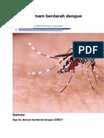 Apa Itu Demam Berdarah Dengue