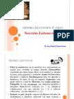 Leccinum-Luteoscabra.pdf