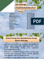 Hidrolisis Phospocreatine (Pcr)