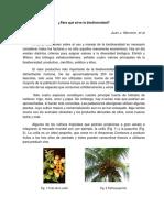CV19 Para Qué Sirve La Biodiversidad