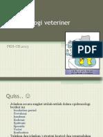 Epidvet Practice