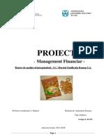 Proiect Mng. Financiar