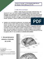 Musica e cervello.pdf