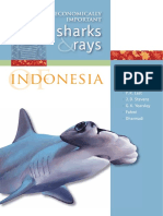 mn124_economically_important_sharks_and_rays_indo_16983_0 HIU.pdf