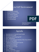 Auditing in SAP Environment