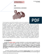 El pendulo_ simple - calculo del valor de (g).pdf