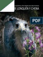 Informe_Chena-Lonquen