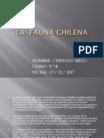 La Fauna Chilena Cristián Melo