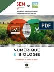 ISEN Cycle Numérique Et Biologie