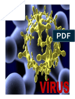 Resumo Virus