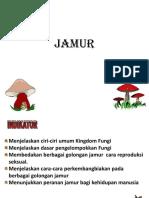 ppt-fungi-15-jan-17.ppt