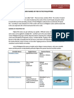 COMMON_NAMES_OF_FISH_IN_THE_PHILLIPPINES.docx