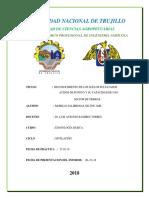 MORILLO- INFORME DE POROTO 2018.docx