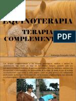 Atahualpa Fernández Arbulú - Equinoterapia, Terapia complementaria