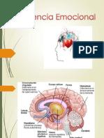 Inteligencia EmocionalLL (1)
