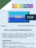 WebTEMAPC06P99