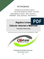 Amostra-Petrobras-Eng-Equipamentos-Jr-Eletrica-Petroleo-Algebra-Linear-Calculo-Vetorial-Matricial.pdf
