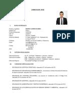 CURRICULUM-VITAE Mario Castro Flores