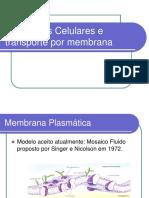 Envoltorios Celulares e Transporte Por Membrana