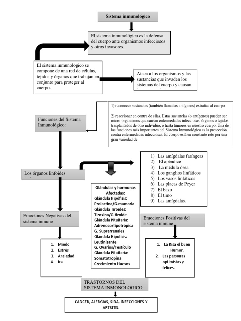 Mapa Conceptual Sistema Inmune