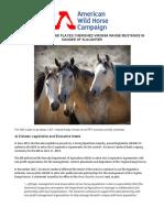 Horse advocates complaints